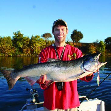 Sacramento Area Salmon: Are You Trolling Fast Enough?