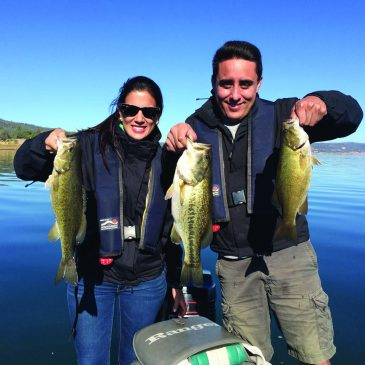 A Three-For-One Special Of Largemouth, Smallmouth & Spotted Bass