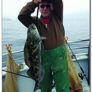 Rockfish And Bonito Fill The Bill For Local Anglers