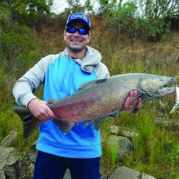 Feather River Hatchery Completes Spawning Salmon