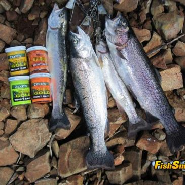 Bank Fishing at San Pablo Reservoir