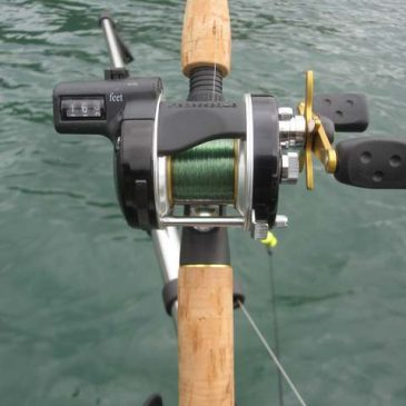 Rod, Reel & Line For Trout Trolling
