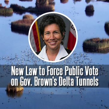 Assemblymember Eggman introduces bill to force vote on Delta Tunnels