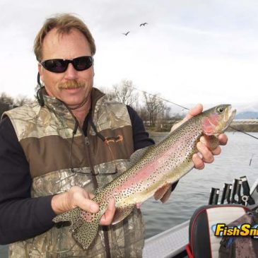 Incredible Wild Rainbow Fishing On The Upper Reaches Of The Lower Sacramento