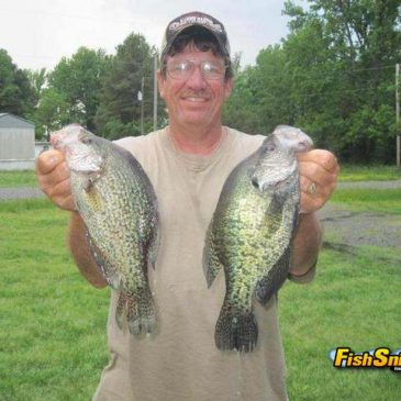 Crappie And Bass Fishing Erupts