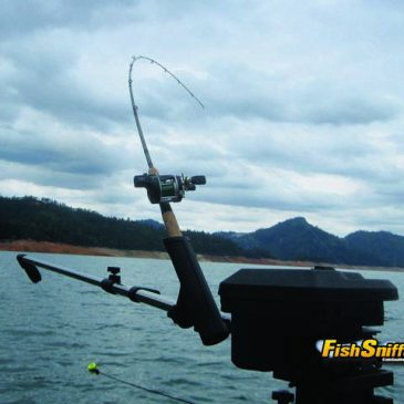 Advanced Level Trolling Tips For Trout And Landlocked Salmon