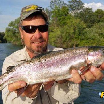 Big Trout Reward Sac River Anglers