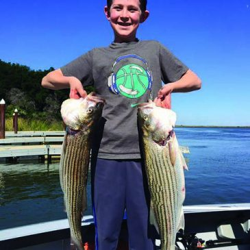 Gusty Winds Don't Slow Down Largemouth And Striper Bites
