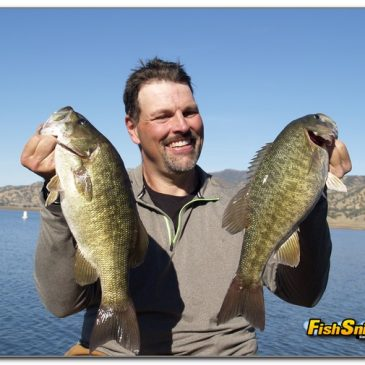 Black Bass Are On Post-Spawn Bite