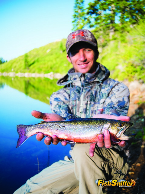 Secret mission high sierra brook trout for The fish sniffer