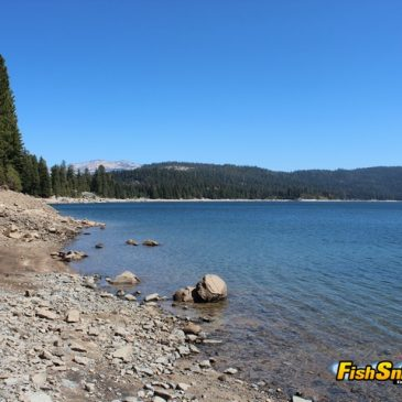 Loon Lake Offers Superb Rainbow Fishing At Desolation Valley Wilderness Edge