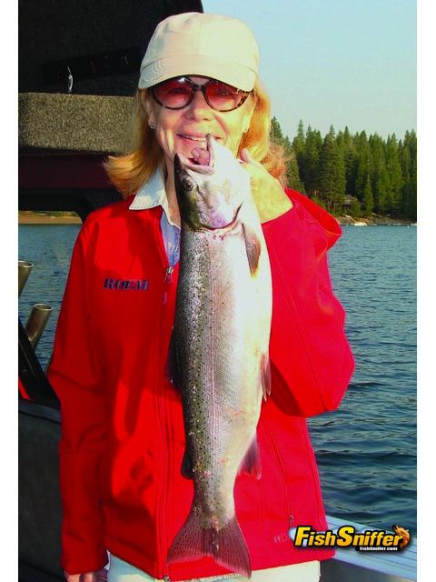 California lake report for Lake almanor fishing report