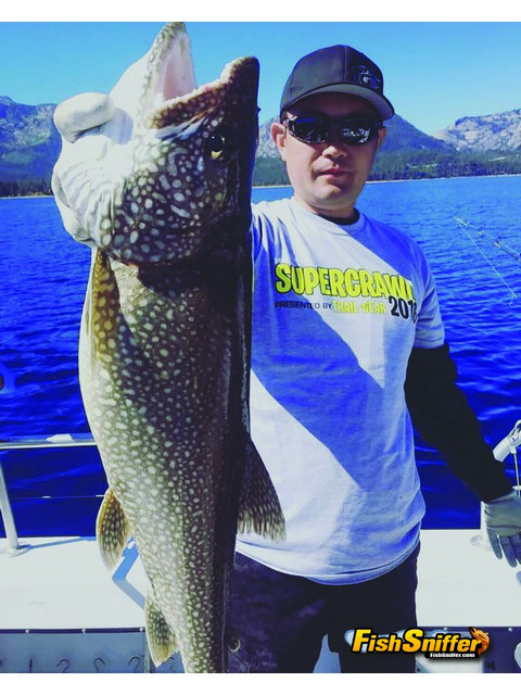 California lake report for The fish sniffer