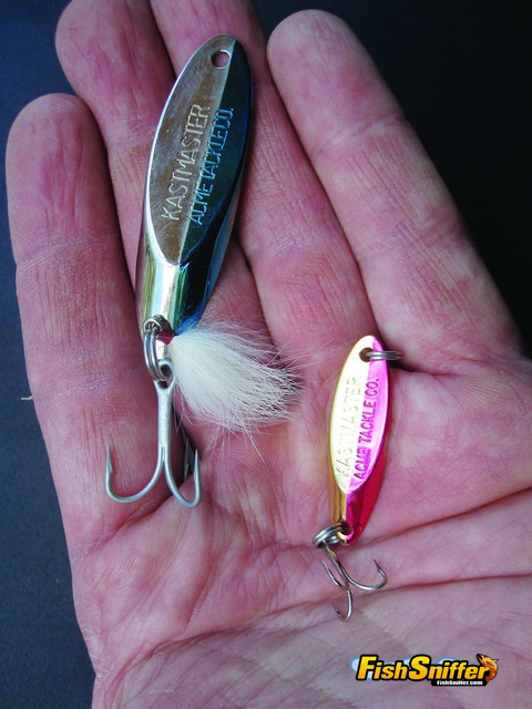 Since trout feed heavily on both threadfin shad and pond smelt spoons are great offerings for both trollers and shore casters. Dense spoons like the Kastmasters shown here are great for shore casters because they sink quickly and can be thrown long distances.
