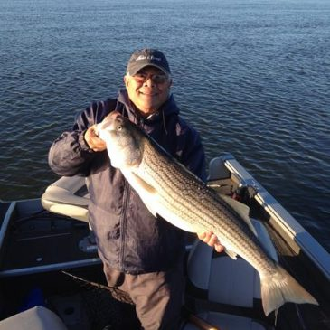 Port Of West Sacramento Offers Stripers, Catfish And Black Bass