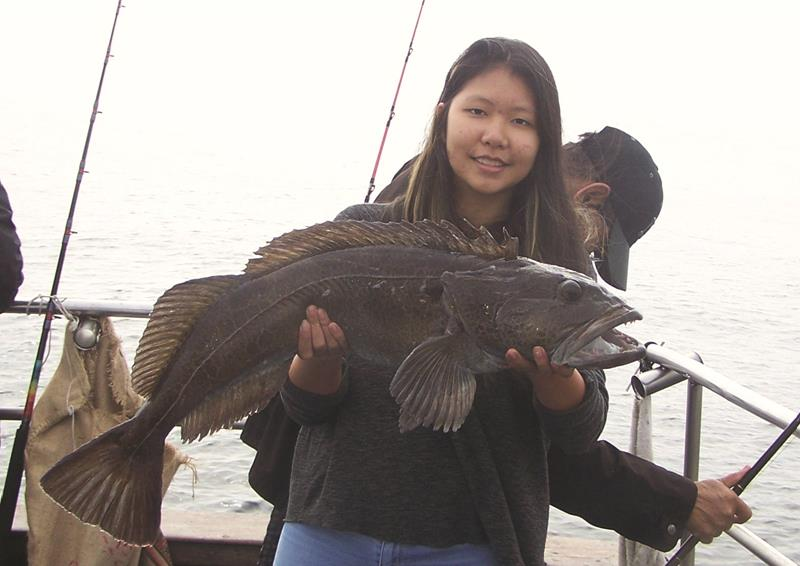 Crystal Nguyen of Fremont caught this impressive 15 lb lingcod during a November crab and rockfish combo trip about the Happy Hooker.
