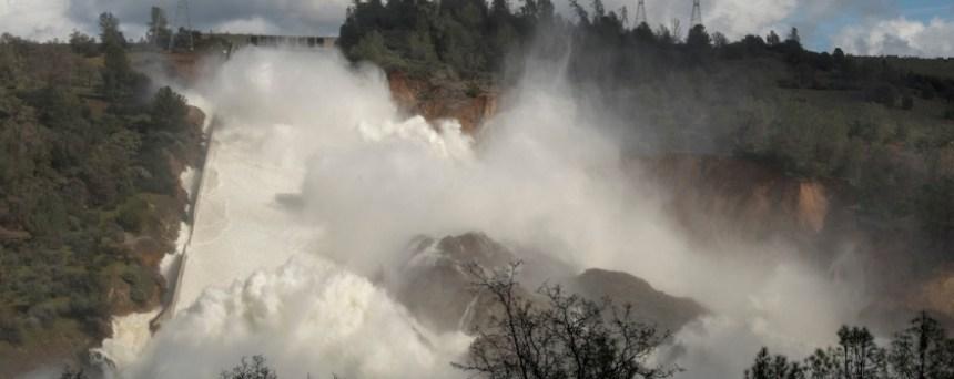 CDFW rescues 8 million young salmon, 1 million steelhead on Feather River