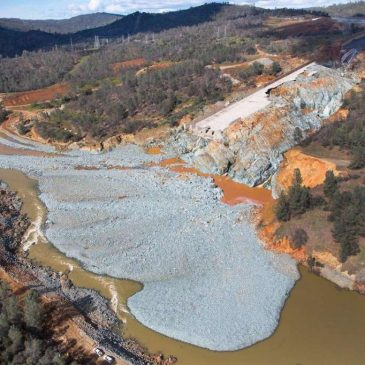 The Feather below Oroville Dam: A Tale of Two Rivers