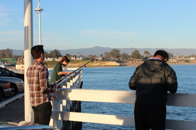 The Santa Cruz Municipal Wharf and other piers and jetties in the Monterey Bay area offer a great opportunity for anglers to pursue surfperch and other fish species.