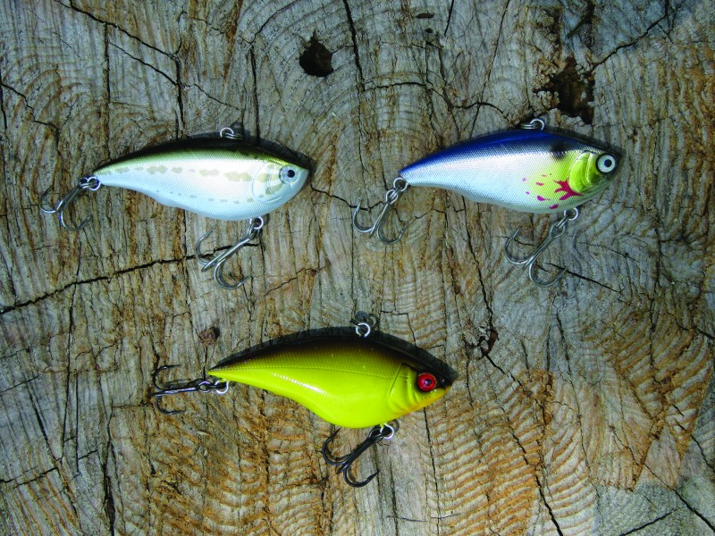 Vibrating crankbaits like these Yo-Zuris are super versatile. You can fish them slow, burn them fast, explore deep water or hammer the shallows with them. If there are active bass in the vicinity, a vibrating crankbait will likely trigger them.