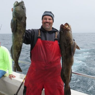 Cal Kellogg School Of Fishing Teams Up With Capt. Quang Vo For Epic Bottomfish Action At The Farallons!