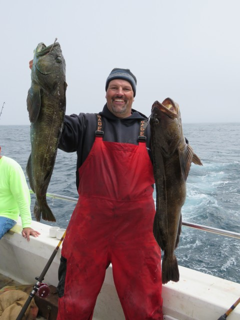 Cal Kellogg caught a bunch of handsome bottomfish, including these big lingcod while fishing Ahi Assault Diamond Jigs from the deck of the Goldeneye 2000 on July 14.