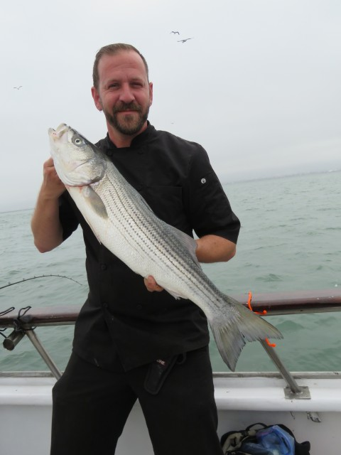 Chef Marc took a break from the galley on the California Dawn and posed for a photo with this beautiful 11 pound S.F. Bay striper.