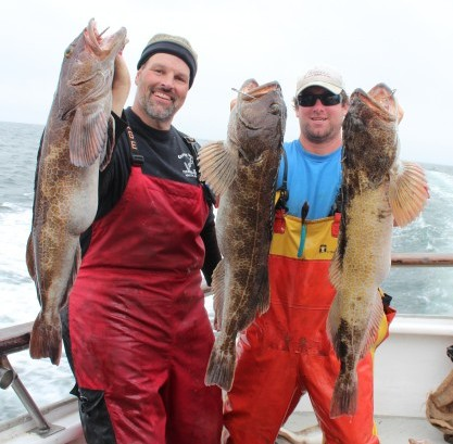 Cal Kellogg, Fish Sniffer Editor, and Mike, the California Dawn deckhand, show off some big lingcod taken at the Farallon Islands.