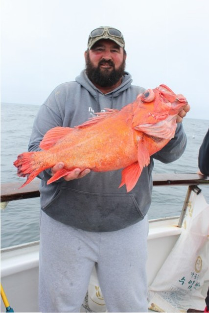 Dave Newton caught this huge vermillion rockfish aboard the California Dawn.