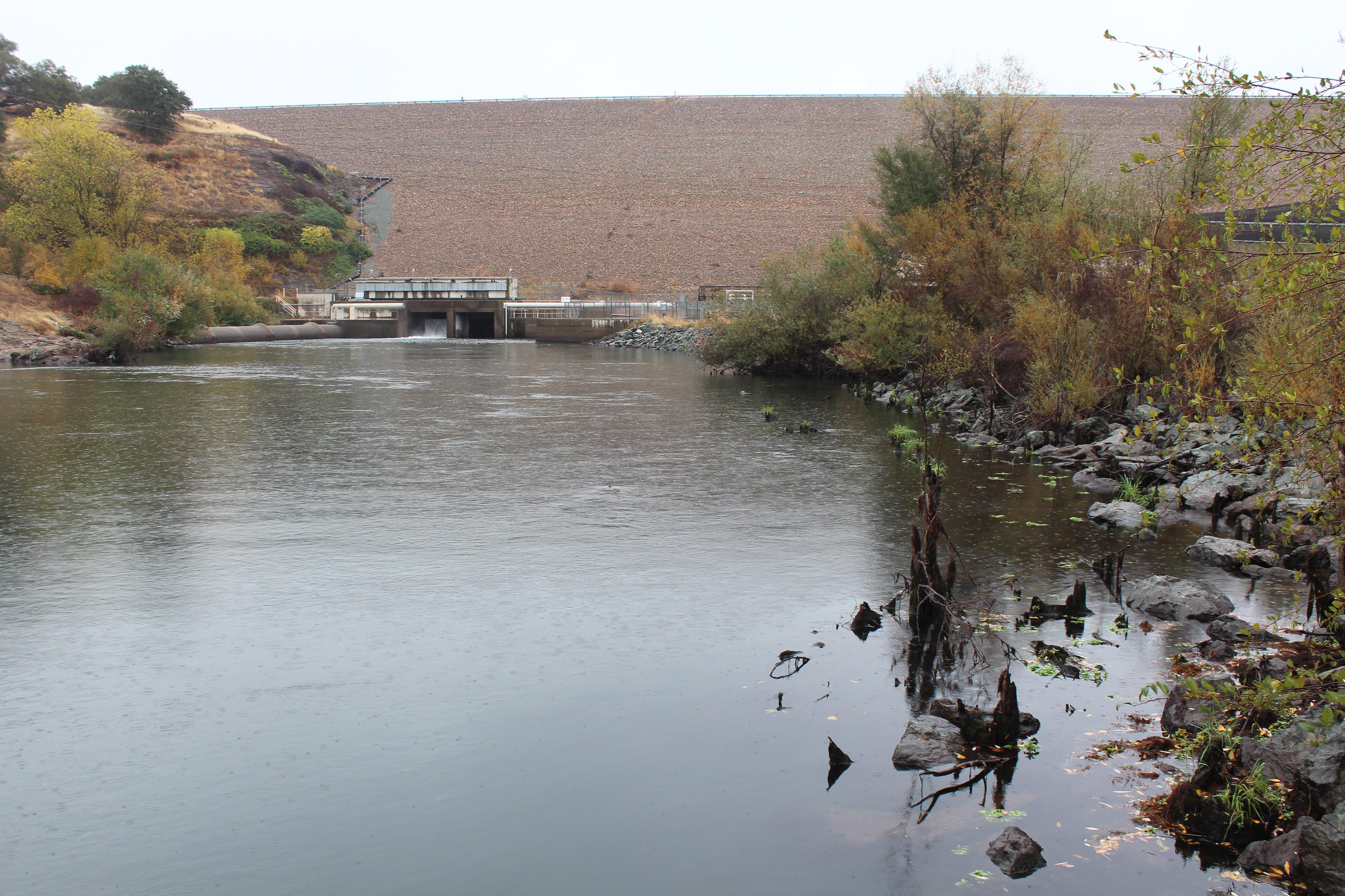 Record chinook salmon steelhead returns reported on for Mokelumne river fishing