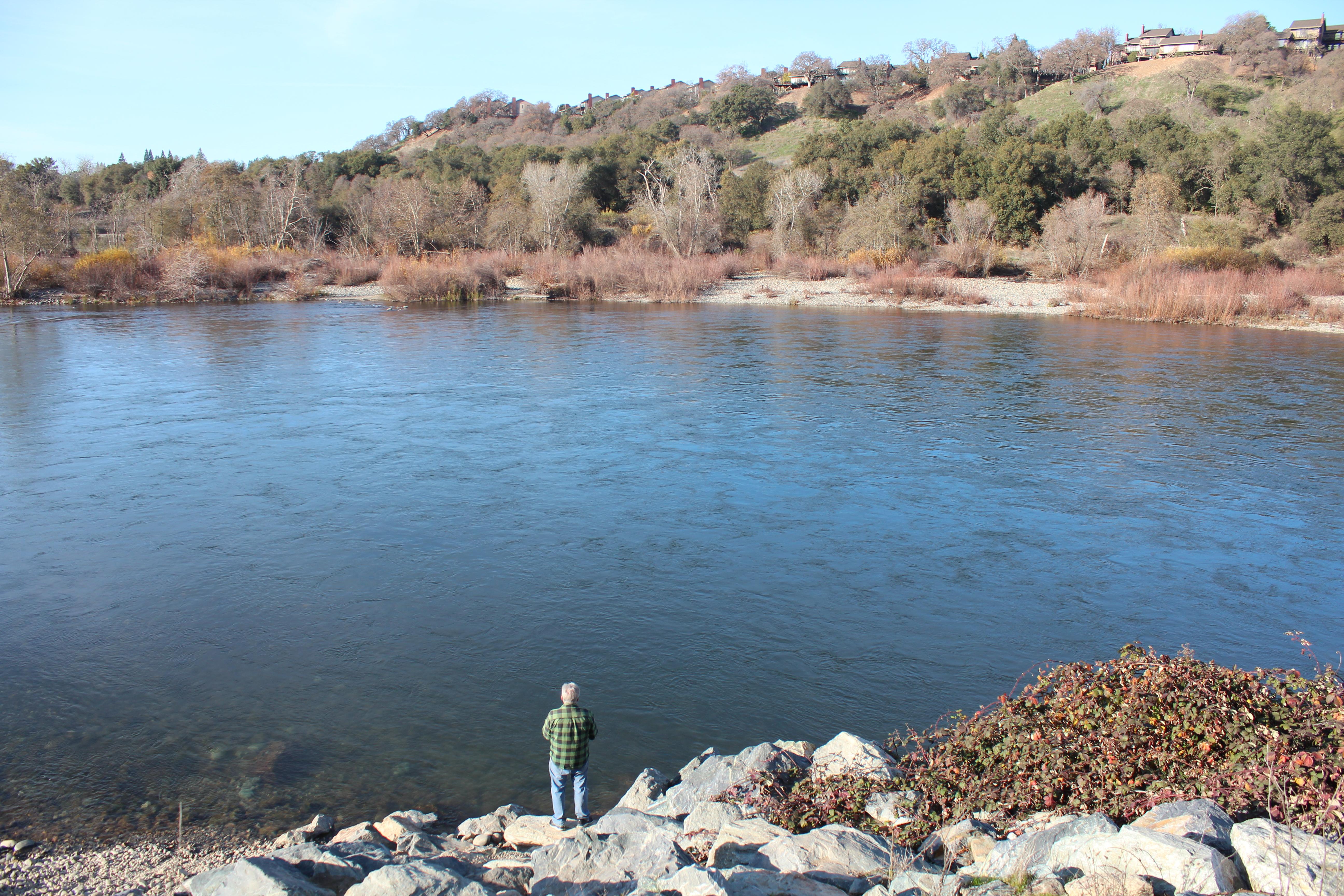 American river steelhead opener yielded few fish for Nimbus dam fishing