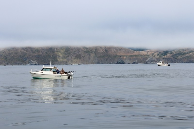 Salmon fishing will open on april 7 below pigeon point for West point fishing report