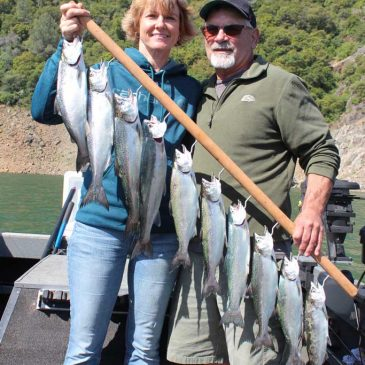 Lake Oroville Kings Are Back in Force!