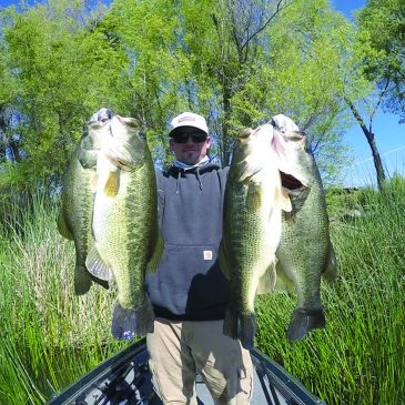 Bass Fishing Moves Into Fall Pattern