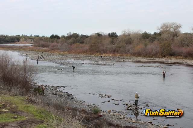 American River Photo_web