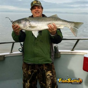 Norm Finally Gets His 'Sturgeon Wish' – A Gigantic Bass