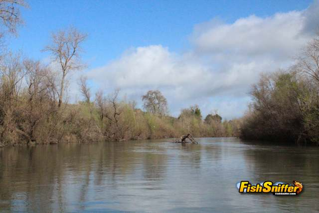 Russian River below Healdsburg_web