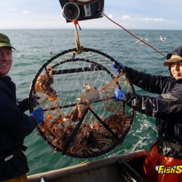 Crab Season Opens Below Pt. Reyes!