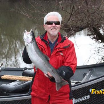 Russian River Steelhead Run Rebounds This Year