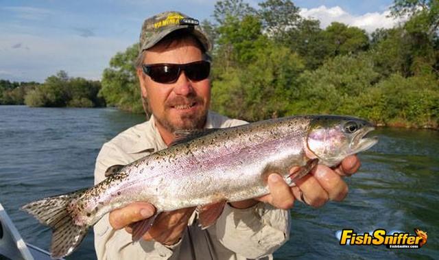 sac trout_web