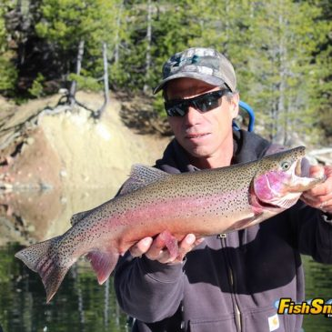 Rainbows, Browns & Bonus Cutthroats Hit At Jackson Meadows