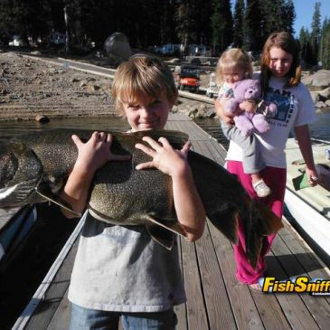 Lower Bear River Reservoir Hosts Scrappy Rainbows, Trophy Mackinaws