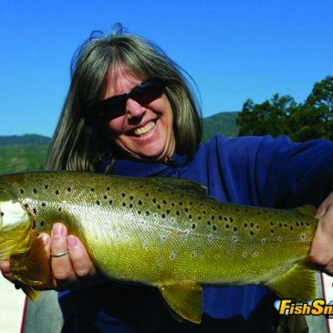 Wild Rainbows Offer Top Sport Until July 16 Salmon Opener