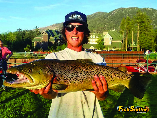 Drew caught the trout of a lifetime on June 3 when he pulled this incredible 10 lb. brown out of Lake Tahoe.