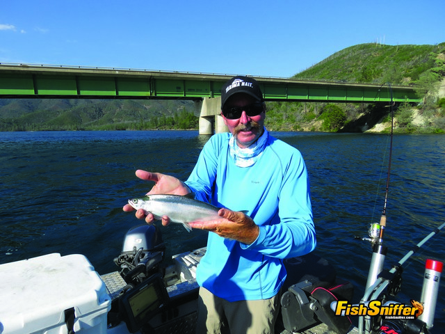 Captain Kirk Portocarrero of SacRiverGuide.Com shows off one of the 15 Whiskeytown kokanee salmon that came aboard his big Willie Boat on July 7.