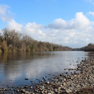 Reclamation slashes lower American River releases to 1,500 cfs