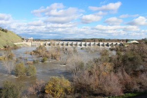 The American River raging through the trees and brush below Nimbus Dam is an awesome sight to behold.