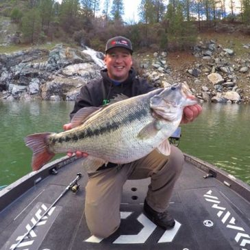 Angler Catches Potential World Record 10.8 Lb Spotted Bass At Bullards Bar