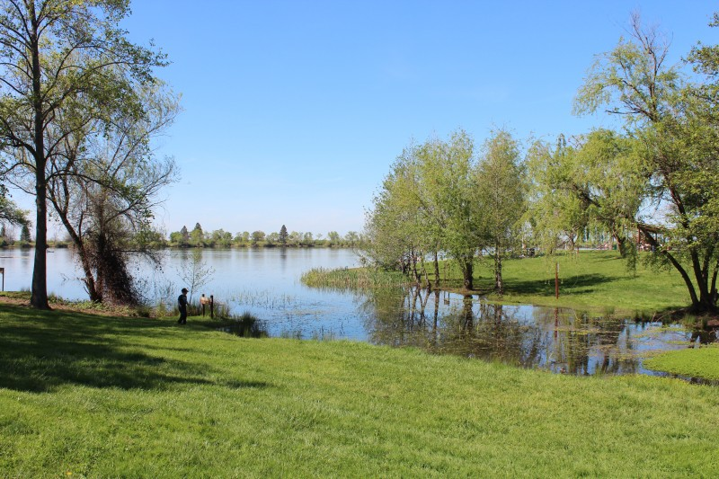 Rancho Seco Lake offers lots of bank and small boat access for anglers in search of rainbow trout, largemouth bass, crappie, redear sunfish and bluegill.