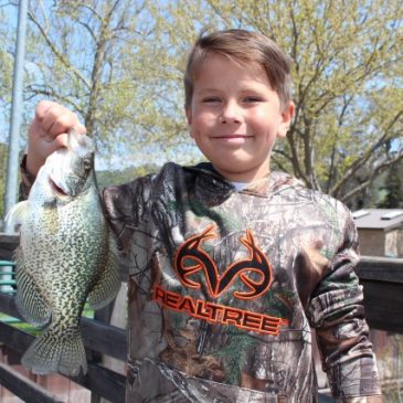 Clear Lake Crappie On Big Spring Bite